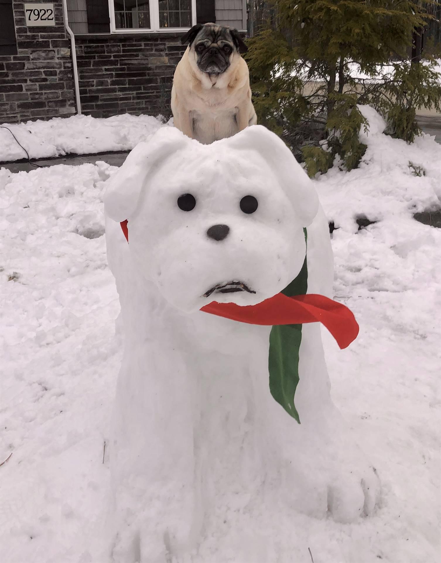 Snowman Building Contest Winner!